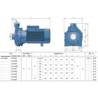 """Центробежный электронасос с мощностью электродвигателя от 1,1-11 КВТ CP 230B """"Pedrollo"""""""